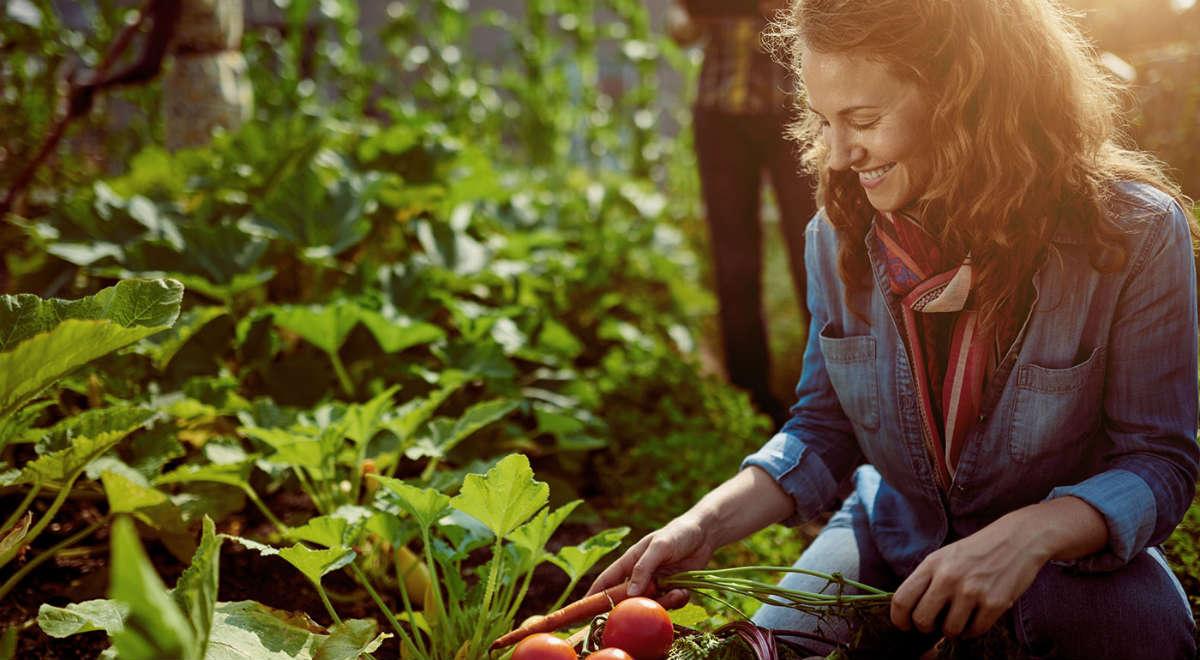 Finanziamenti per l'Agricoltura | BPER Banca